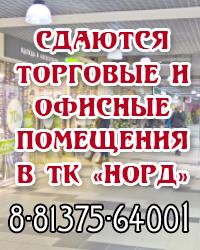 Вернисаж Кингисепп